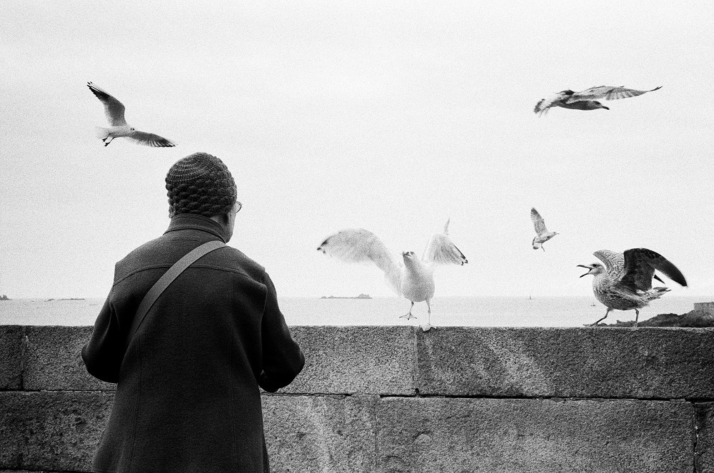 The woman with the gulls