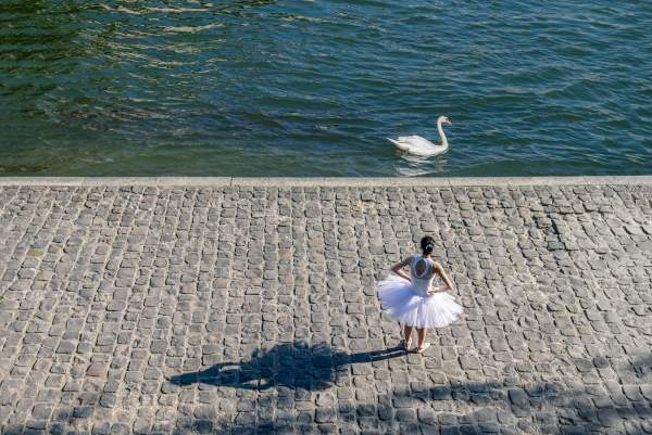 The swan and the ballerina